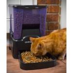 Futterautomat für Katzen